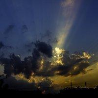 Динозаврик ищет солнце :: Александр Кореньков