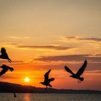 Рассвет над городом Варна :: Артем Воробьев