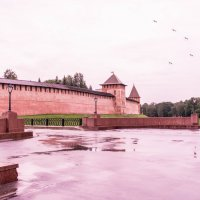 Великий Новгород  2016 :: Виктор Орехов