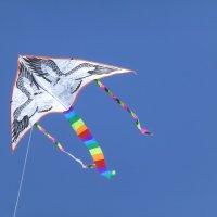 Фестиваль воздушных змеев «Летать легко!» :: Наиля