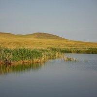 2 июля 2016 г. На озере :: Марина Мишутина