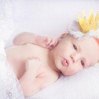 Маленькая принцесса :: Tatyana Smit