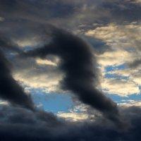 Небесные кони :: Андрей Скорняков