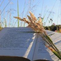 С книгой в поле :: Мария