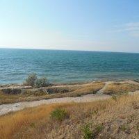 Чёрное    море :: Мила