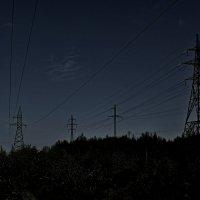 Ночь в лесу :: Алексей Вольный