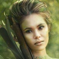 История одного болота :: Анастасия