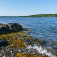 Залив Fundy во время отлива, впереди остров (New Brunswick, Canada) :: Юрий Поляков