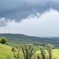 Будет дождь :: Игорь Сикорский