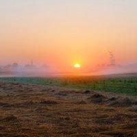 солнце проснулось :: Elena Wymann