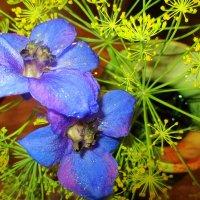 Желто-голубой натюрморт. :: Valentina