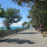 Набережная свободна для прогулки :: Svet Lana
