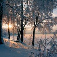 Холодный озарённый иней :: Владимир Миронов