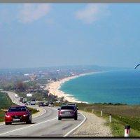 по  побережью  Азовского  моря. :: Ivana