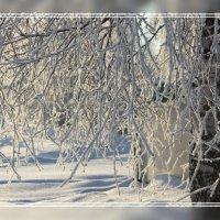 Зима. Утро... :: Александр Широнин