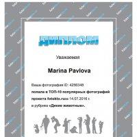 Мой первый.... диплом))) :: Marina Pavlova