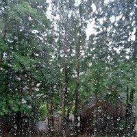 Дождливай день :: ivolga