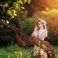 закат :: Любовь Лебедева