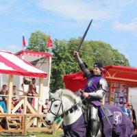 Рыцарь на белом коне :: Вера Моисеева