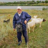 Пастух :: Юрий Шапошник