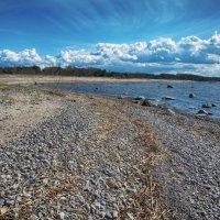 Северный берег,Эстония :: Priv Arter