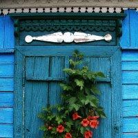 цветущее окно :: YURIY CH
