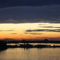 Тихая гавань :: Максим Пасека