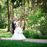 Свадьба из сказки :: Павел Громыко