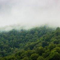 не туман, это туча сползает с горы :: Дмитрий Карышев