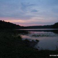 Лесное озеро :: Владимир Филиппов