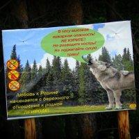 Говорящие волки :: Андрей Заломленков
