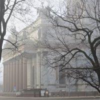 в утреннем тумане Исаакий :: Елена