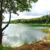 Рукотворное озеро, берег правый :: Маргарита Батырева