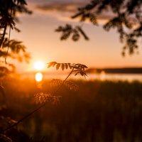 Когда уходит солнце.. :: Светлана Салахетдинова