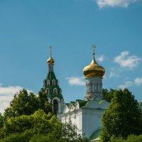 Спасский собор в Бужарово :: Alexander Petrukhin