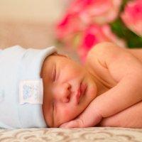 Новорожденный малыш :: Марина Алексеева