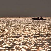 ловцы золота :: Михаил Манеев
