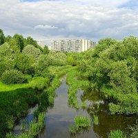 летний московский пейзаж :: megaden774