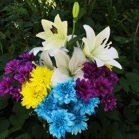 Дарите девушкам цветы :: Наталья Понтус