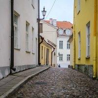 Фотопрогулка в Таллинн. :: Nonna