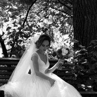 невеста :: Светлана Прилуцких