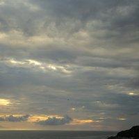 К перемене погоды! :: Marina Talberga