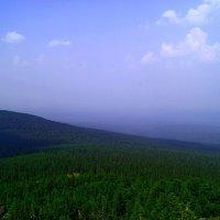 вид с васильевской горы :: Константин Бабкин
