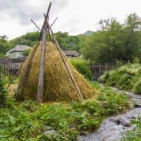 деревенские запасы на зиму :: Олеся Ханина