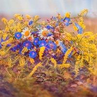 В разгаре лета :: Anastasiya Ageeva