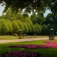 Светотень в парке :: Татьяна Каримова