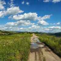 горы Карпаты :: Сергей Форос