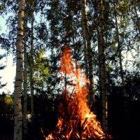 Пламя :: Елена
