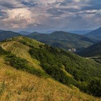 Июль в горах :: Андрей Дворников