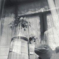 Реквием по вазе :: Ирина Сивовол